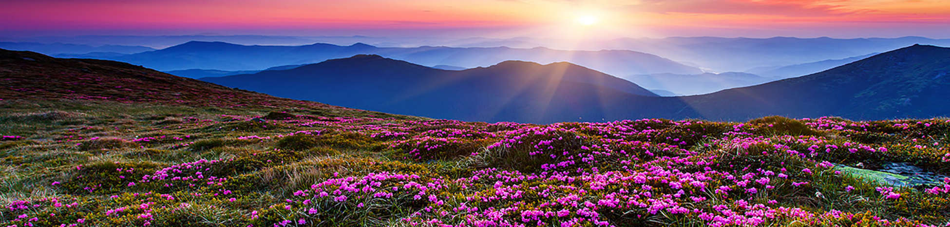 Carpathian Mountains 2